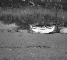 Today We Sail by Sandy Woolard