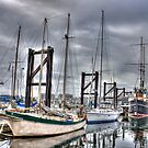 Boats in Harbor - Victoria, B.C. by Barb White
