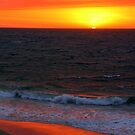 Ocean on Fire by Jill Fisher