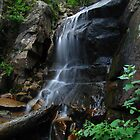 Colorado Waterfalls by Bill Hendricks