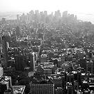 New York Skyline - Lower Manhattan by Jeffrey West