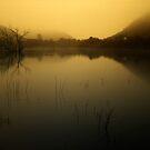 Apocalypse morning by Gustav Snyman