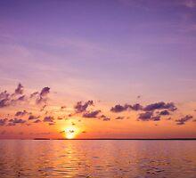 Sunset  by torishaa