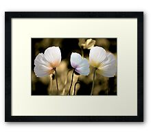 Poppies in the Wind Framed Print