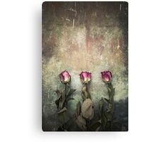Three dried roses Canvas Print