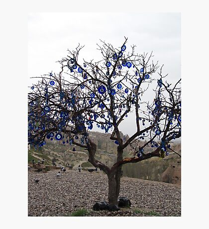 Turkey - Evil Eye Tree Photographic Print