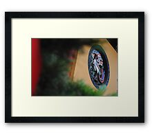 Chinese Peacock Framed Print