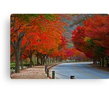 A Red Road Canvas Print
