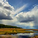 Klamath Marsh Big Sky by Charles & Patricia   Harkins ~ Picture Oregon