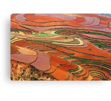 Dongchuan Red Land 01 Canvas Print