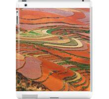 Dongchuan Red Land 01 iPad Case/Skin