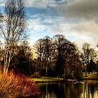Longton Park in February by Aggpup