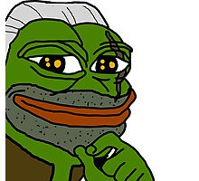 Pepe Frog Witcher 3 Geralt Photographic Print