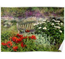 Flower - Poppy - Poppies  Poster