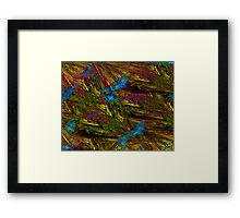 I am a Forest Framed Print