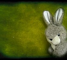 One Bunny by henribanks