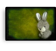 One Bunny Canvas Print