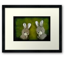 Two Bunnies Framed Print