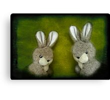 Two Bunnies Canvas Print