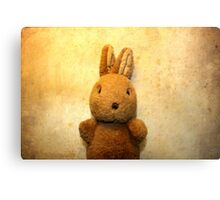 the first Bunny Metal Print