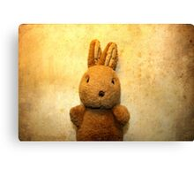 the first Bunny Canvas Print