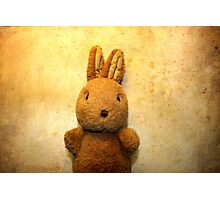the first Bunny Photographic Print
