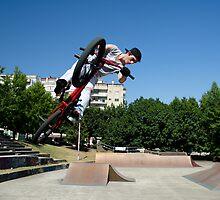BMX Bike Stunt Table Top by homydesign