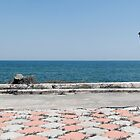 panorama of Costinesti cliff, Black Sea, Romania by wildrain