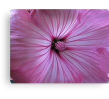 The depths of a flower Canvas Print