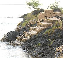 Island Stairway  by ronholiday