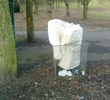 mattress dumped in a bin in the park by H J Field