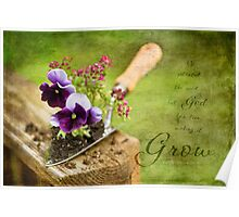 Pansy Trowel Poster