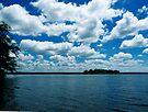 Summer Clouds  by Marcia Rubin