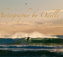Gold Coast Surf & Surfing by Odille Esmonde-Morgan