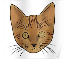 Cat / Kitten (Benji) Poster