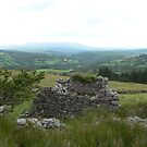 """Ruins of an old """"Famine House"""",,Knockanaffrin,Co.Waterford,Ireland. by Pat Duggan"""