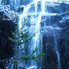 Billy Brown's Falls by Asoka