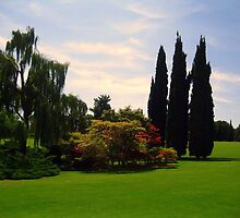 Green Open Spaces - Sigurtà - Italy by sstarlightss