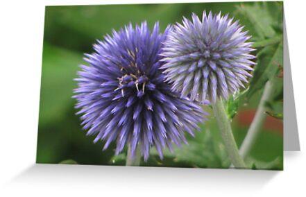 """""""Blue Orb Flowers"""" by dfrahm"""