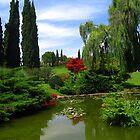 Walking in the Nature - Garden Park Sigurtà by sstarlightss