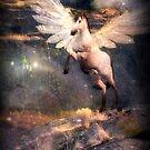 I Am Pegasus by Vanessa Barklay