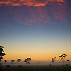 Twilight Before Sunrise by Pascal Hartmann