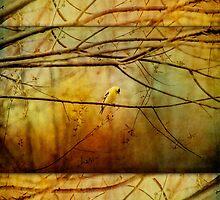 Yellow Songbird in Morning Prayer by ginkelmier