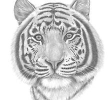 White Tiger by PatriciaHiltz