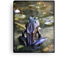 Yoga Frog Metal Print