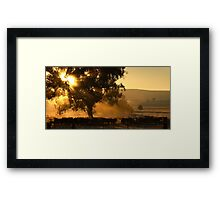 Cattle Sunrise 2 - Parkes, NSW Framed Print