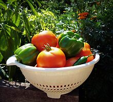 Garden Goodies by Susan S. Kline