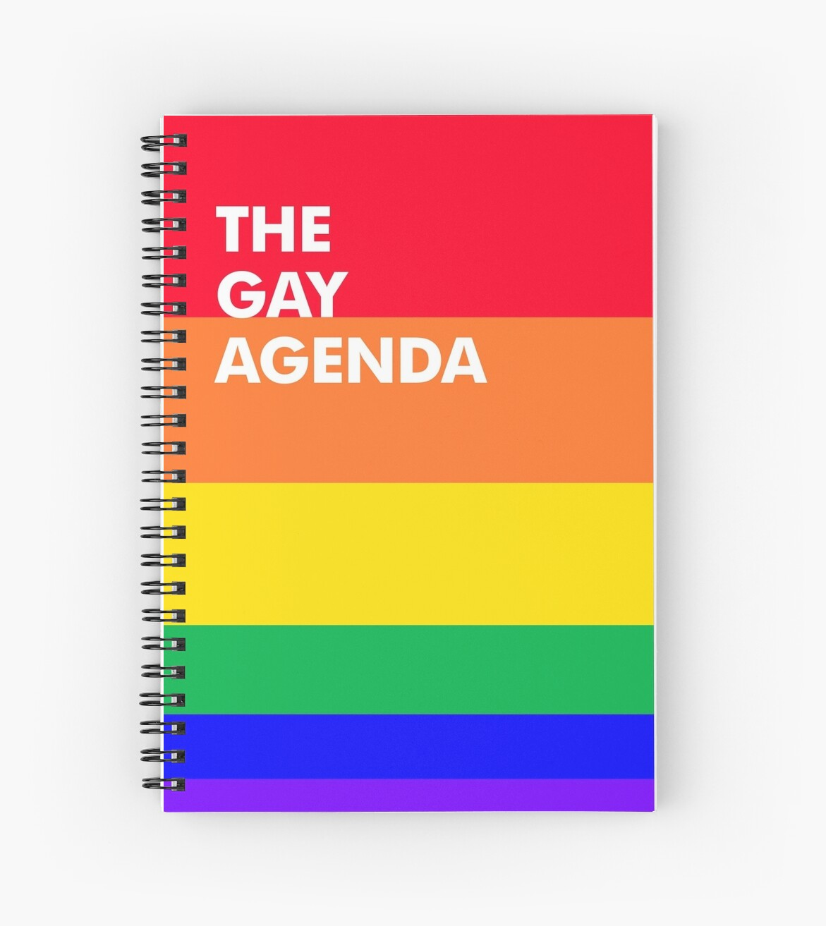 What is the gay agenda