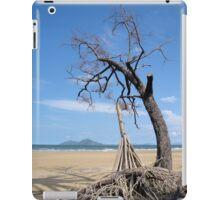 Dunk Island from North Mission Beach iPad Case/Skin