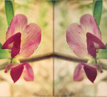 fleur de deux by vampvamp